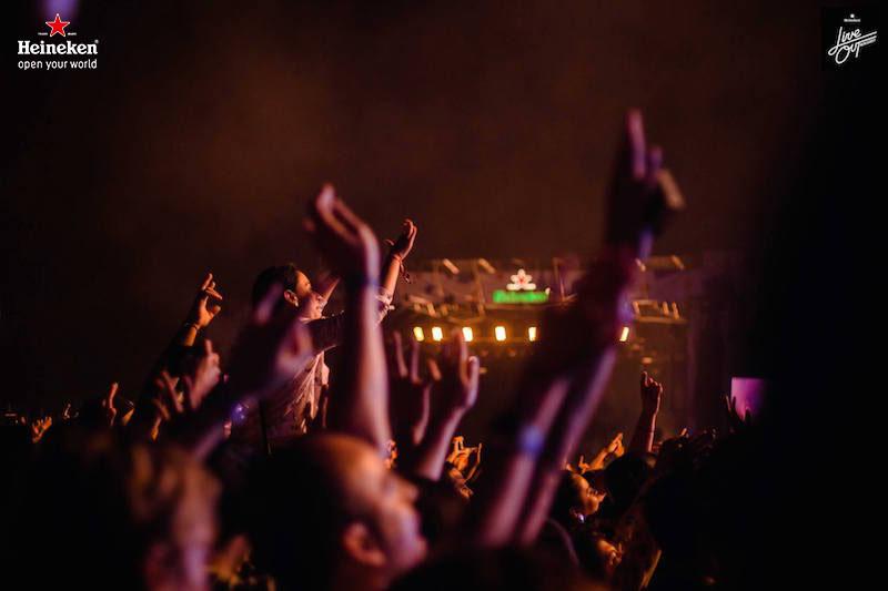 liveout-7