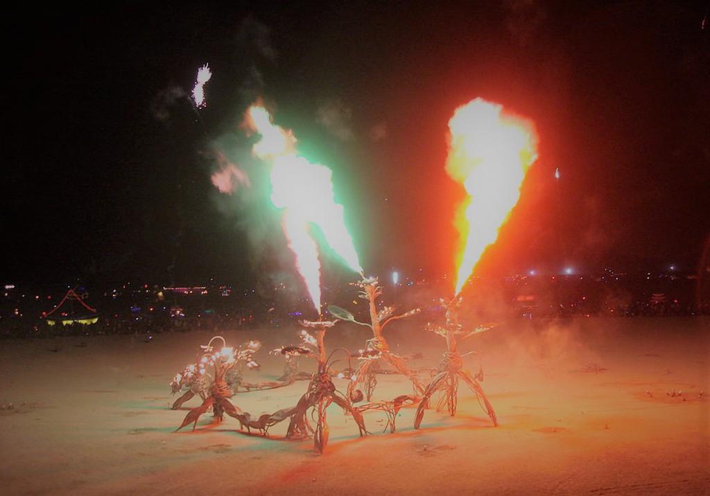 burningman2008