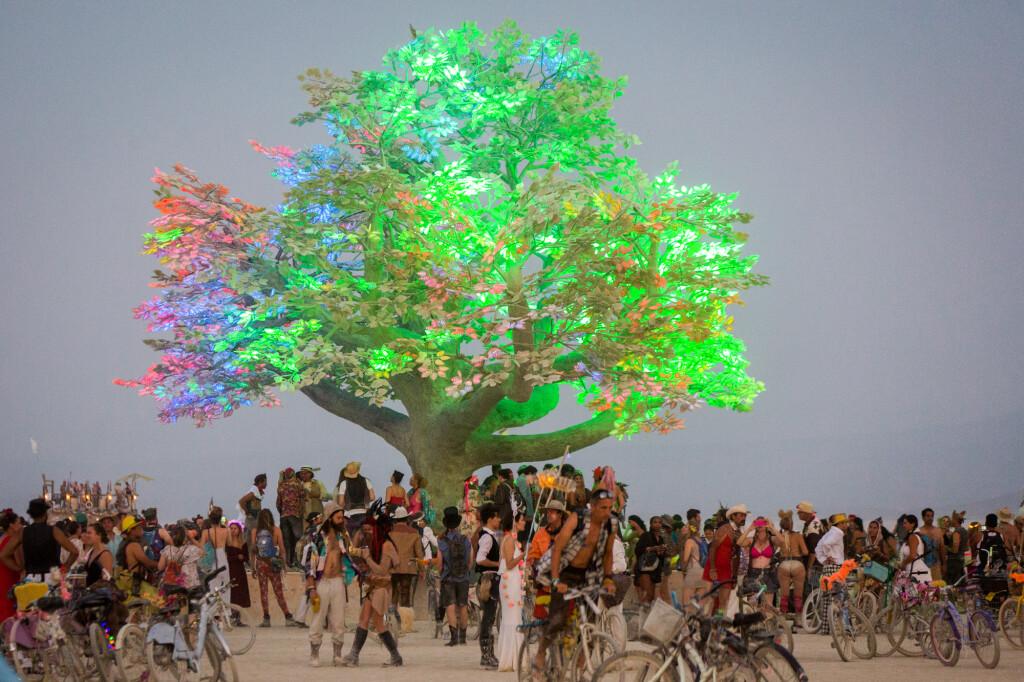 Burning Man Project